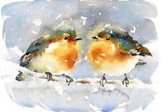 Покрашенная рука иллюстрации птицы зимы акварели робинов Стоковое Изображение