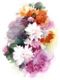 Покрашенная рука иллюстрации цветков мам акварели хризантемы Стоковая Фотография