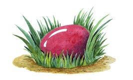 Покрашенная рукой иллюстрация акварели красочного розового пасхального яйца кладя в свежее tuffet зеленой травы closeup бесплатная иллюстрация