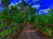 Покрашенная фантазия моста стоковая фотография