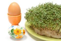 Покрашенное и свежее пасхальное яйцо с зеленым кресс-салатом Стоковое фото RF