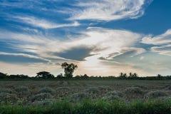покрашенное небо Стоковые Изображения