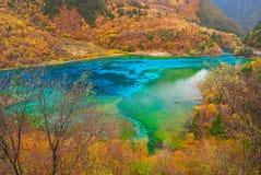 5 покрашенное озеро стоковые фотографии rf