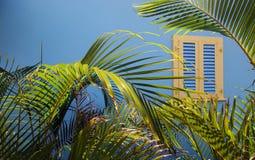 покрашенное окно Стоковое Изображение RF