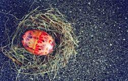 покрашенное пасхальное яйцо Стоковое Изображение