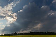Покрашенное поле желтого цвета blossoming Ландшафт лета с облаками шторма Стоковая Фотография RF