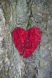 покрашенное сердце красным Стоковые Фотографии RF