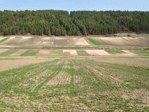 Покрашенное сельское хозяйство земли Стоковые Изображения