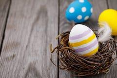 Покрашенное яичко цыпленка в гнезде березы разветвляет Стоковые Фотографии RF