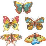покрашенные бабочки Стоковые Изображения RF