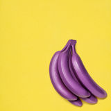 Покрашенные бананы Стоковое Изображение