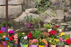 Покрашенные вазы с цветками на утесе Стоковое фото RF