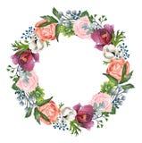 Покрашенные вручную розы акварели, ветреницы и венок пионов Стоковая Фотография