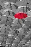 Покрашенные зонтики Стоковое Фото