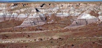 Покрашенные неплодородные почвы Стоковая Фотография RF