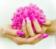 Покрашенные ногти на весна стоковые изображения rf