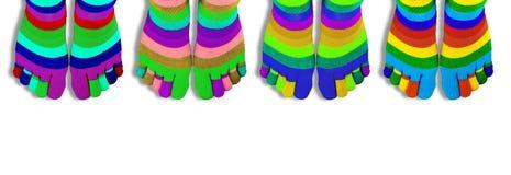 Покрашенные носки при пальцы изолированные на белизне панорама стоковая фотография