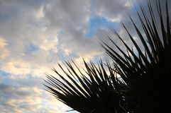 Покрашенные облака над океаном стоковое фото rf