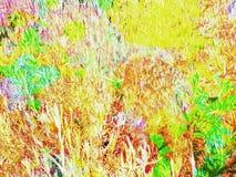 Покрашенные обои сени дерева стоковые фотографии rf