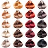 Покрашенные образцы волос Стоковые Изображения