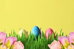Покрашенные пасхальные яйца и розовые цветки в ведре в зеленой траве Стоковое Изображение