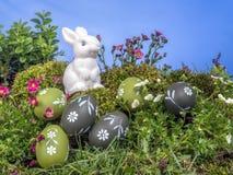 покрашенные пасхальные яйца зайчика Стоковое Фото