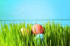 Покрашенные пасхальные яйца на зеленой траве Стоковое Изображение