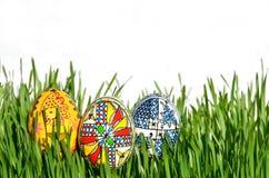 Покрашенные пасхальные яйца на зеленой траве Стоковые Фото