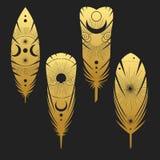 Покрашенные пер птицы Иллюстрация вектора нарисованная рукой в стиле boho Иллюстрация штока