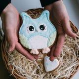 Покрашенные печенья в женских руках Стоковое Изображение