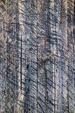 Покрашенные планки стены деревянные серыми Стоковые Фотографии RF