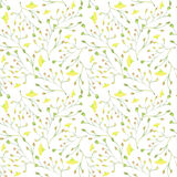 Покрашенные рукой заводы цвета воды Безшовная картина на белой предпосылке Стоковое Изображение RF