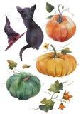 Покрашенные рукой иллюстрации акварели Комплект элементов и объектов хеллоуина иллюстрация штока