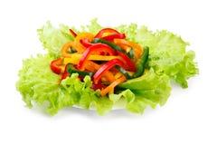 покрашенные свежие овощи паприки смешивания Стоковое фото RF
