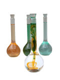 покрашенные склянки Стоковые Фото