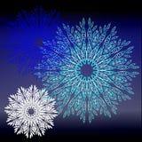 Покрашенные снежинки Стоковые Фотографии RF