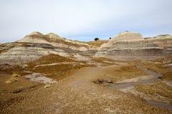 покрашенные холмы пустыни стоковое изображение rf