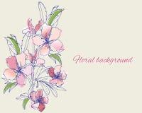 Покрашенные цветки вектора в нежных розовых цветах иллюстрация штока