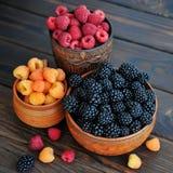 Покрашенные ягоды красных, желтых и черных поленик или ежевик в керамике стоковое изображение