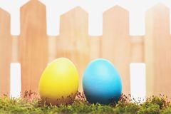 Покрашенные яичка пасхи красочные на деревянной загородке на зеленом мхе Стоковая Фотография RF