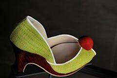 покрашенный ботинок женской потехи multi стоковое фото