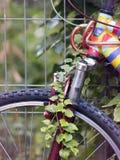 Покрашенный велосипед Стоковая Фотография