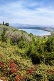 Покрашенный взгляд на dei Baratti Golfo от Populonia Стоковое Изображение