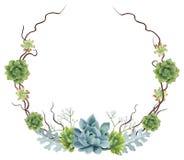 Покрашенный вручную венок Succulents акварели Стоковая Фотография
