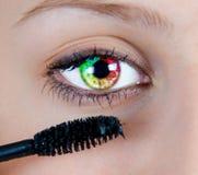 Покрашенный глаз Стоковые Изображения RF