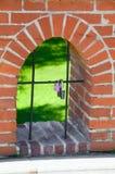 Покрашенный замок на железной загородке Стоковое Фото