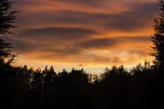 покрашенный заход солнца Стоковое Изображение