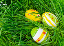 покрашенный зеленый цвет травы пасхальныхя Стоковые Фото
