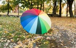 покрашенный зонтик на листьях осени Стоковое Изображение