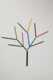 Покрашенный карандаш формируя дерево Стоковые Фото